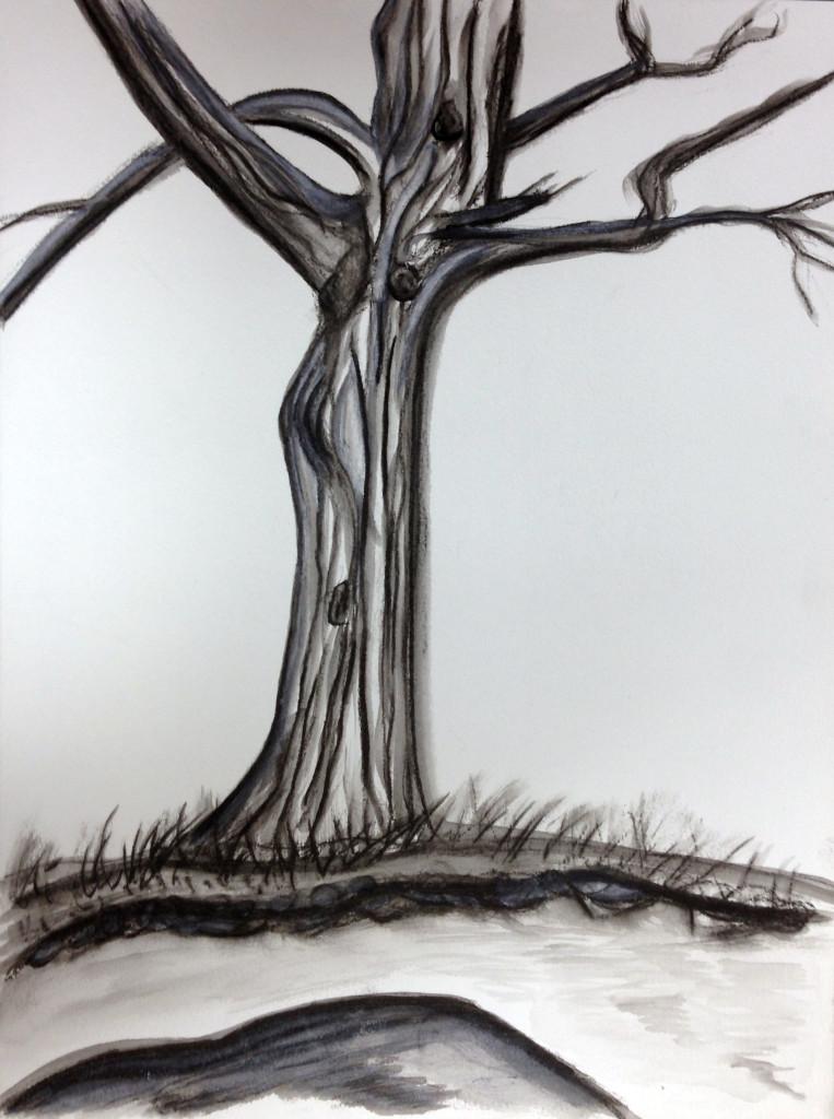 Parkside Tree