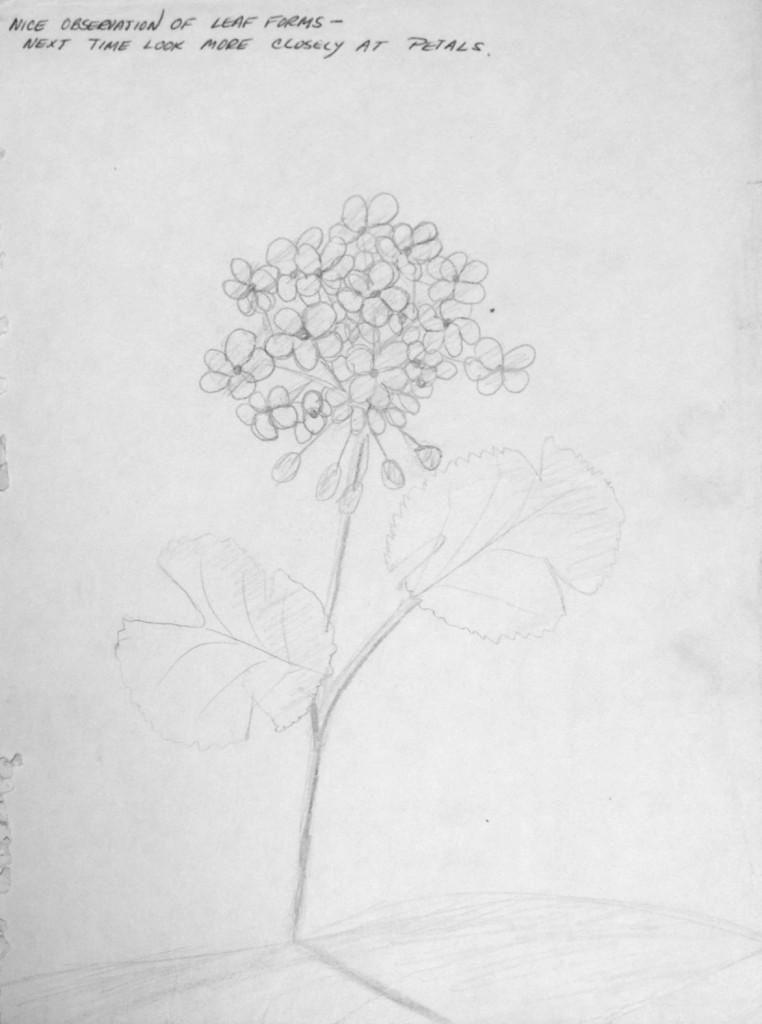 Flower Pedals