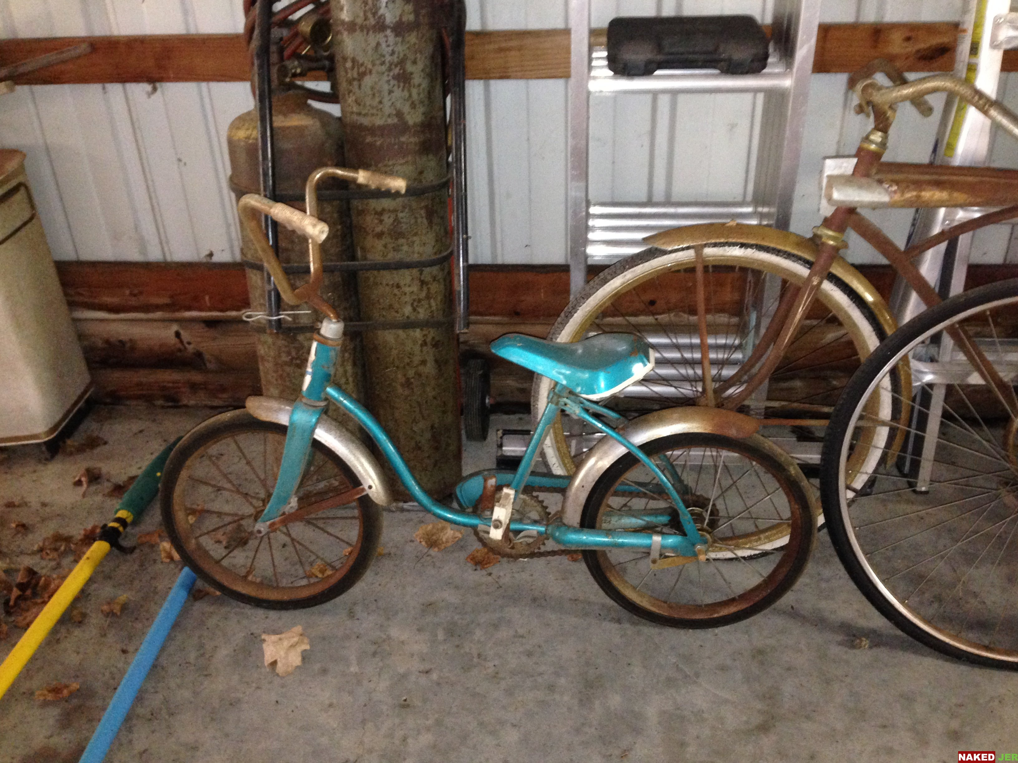 Girls bike blue $15